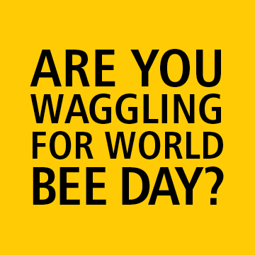 Are you Waggling for World Bee Day?